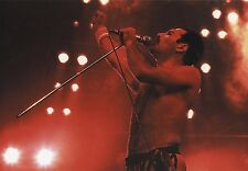 FREDDIE MERCURY QUEEN PHOTO 1984 UNIQUE UNRELEASED EXCLUSIVE IMAGE 12 INCH RARE