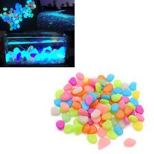 20x Nachtleucht Leuchtsteine Bunt Kiesel Natürlich Dekoration Fisch Aquarium Neu