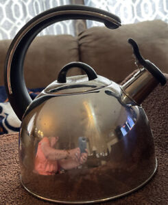 STAINLESS STEEL TEAPOT KETTLE WITH CURVED BLACK HANDLE