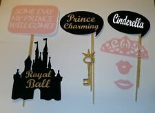 Disney inspired photo prop Cinderella / Prince Charming / Glass Slipper (2143D)