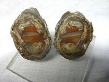 Très belle paire de lithophyses de l'Esterel