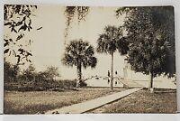 RPPC Palm Trees Pier Victorians Real Photo c1915 Postcard G6