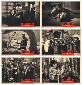 IL LUPO DELLA SILA FOTOBUSTE 6 PZ VITTORIO GASSMAN AMEDEO NAZZAR 1949 LOBBY CARD