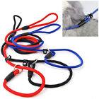 Pet Dog Rope Training Leash Slip Lead Strap Adjustable Collar Ornate Best