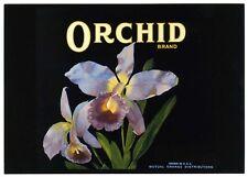 Orchid Flower Historical Authentic Orange Fruit Crate Label Art '79 Postcard