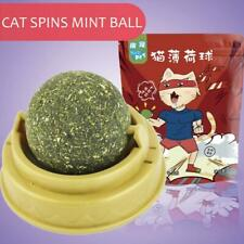 Training Cat Favor Funny Catnip Ball Pets Supply Cat Toy Kitten Coated Mint