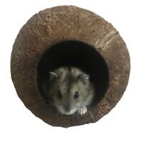 Hamster Gerbil Bed Nest Bird, Fish House Coconut  (Baked to kill all PARASITES)