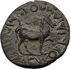 CLAUDIUS 41AD Cidrama Caria Horse AUTHENTIC Ancient Roman / Greek Coin i57253