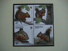 ARMENIA 2001 serie completa 4 francobolli TEMATICA : WWF scoiattolo del Caucaso