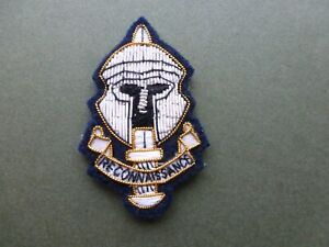 Special Reconnaisance Regiment in bullion