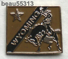 WYOMING STATE  VEST JACKET HAT TAC PIN