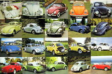 "AUTOS ""COLLAGE OF DIFFERENT VOLKSWAGEN BEETLES"" ASIAN POSTER - 20 VW MODELS!"