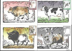 Macau, China 2021-1 Ox 4V Maximum Postcard Stamp Zodiac Animal 牛年