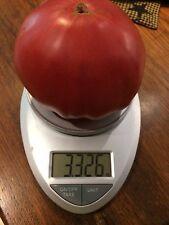 Big Zac World Record Largest Heirloom Tomato Premium Seed Packet