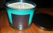 Damask Cotton Soy Candle 14 oz Double wick By Wolf + Lamb - Teal Glass Holder