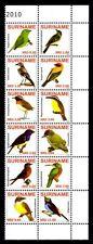Surinam 2010 oiseaux neuf ** 1er choix