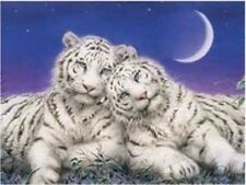 Beautiful Matted White Tiger Seranade Foil Art Print~Affordable Art~8x10 Animal
