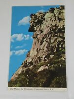 Vintage 1970s OLD MAN OF THE MOUNTAIN FRANCONIA NOTCH NH 8c Stamp NC116a