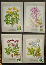 "Island 1983: Set Maximumkarten/MK/m. FM ""Blumen flowers"" + St Nordfrimex RARE!"