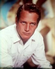 PAUL NEWMAN HANDSOME STUDIO PORTRAIT 8X10 COLOR PHOTO