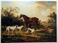 Reproduction Lithograph Landscape Print Picture of Horse with Dogs