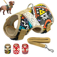 Pet Cat Dog Harness and Leash Mesh Padded Puppy Walking Vest with Fashon Pattern