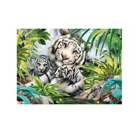 White Tigers Family Animals Jungle Paint By Numbers Kit Canvas Art Home Decor