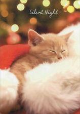 Kitten in Santa Hat American Greetings Christmas Card