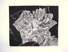 Crispian Dark Tulip-edizione limitata firmato morsura da studio Angela