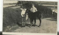 Horse Postcard - COURT- REAL PHOTO- Boys and pony foal