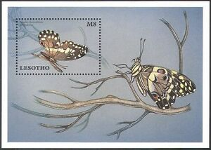 Lesotho 1997 Butterfly/Butterflies/Insects/Nature/Conservation 1v m/s (b570)