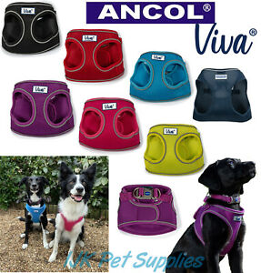 Ancol Viva Comfort Step in Soft Breathable Air Mesh Dog Puppy Harness Vest