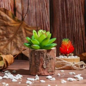 Moments Props Plant Pot Wood Candlestick Home Decor Candle Holders Candle Stand