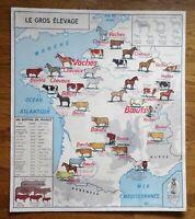 carte d'école - affiche scolaire 1960 le gros élevage - le rhone et affluents