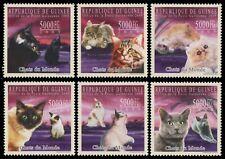 Guinea 2009 - Mi-Nr. 7189-7194 ** - MNH - Katzen / Cats