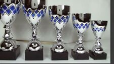 Silver Blue Cup- Free Engraving 41cm- Bargain