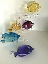 Swarovski Crystal Figurine - Rainbow Fish Family - 5223195