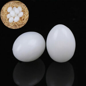 Eggs Fake10Pcs Hatching Supplies White Solid Plastic Dummy Eggs Solid Pigeon