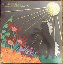 BIG BUSINESS Command Your Weather LP SEALED Karp Melvins Murder City Devils