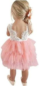 Toddler Baby Flower Girls Princess Tulle Dress Lace Backless, Pink, Size 0.0
