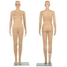 Mannequin Femme Vitrine Boutique Modele Courturier taille Réelle Couleur Chair