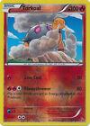 Torkoal Uncommon Reverse Holo Pokemon Card XY2 Flashfire 16/106