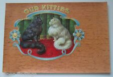 OUR KITTIES Cigar Box Label Two Long Haired Cats