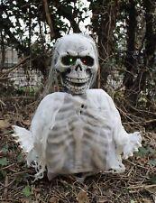 Planta rotura Novia Esqueleto Decoración Fiesta De Halloween PROPULSOR Ojos Intermitentes