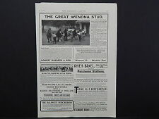 The Breeder's Gazette, Nov. 28, 1906, One Advertising Page, Double Sided #01