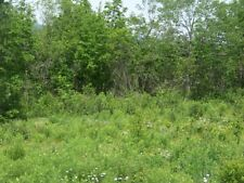 Eco-Friendly 2.31 Acre Residential Building Lot at Claremont Valley View Estates
