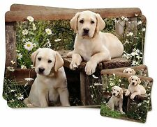Yellow Labrador Puppies Twin 2x Placemats+2x Coasters Set in Gift Box, AD-L50PC