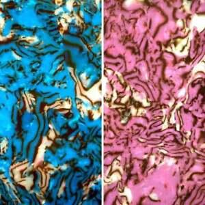 Incudo Fine Shell Celluloid Laminate Acrylic Sheet