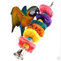 Easy Luffa Pet Bird Parrot Macaw Bell Swing Scratcher Parrot Bites DS