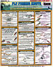 FLY FISHING KNOTS - Saltwater #2 -Knot-Tying Chart - Tightline Tightlnes #8